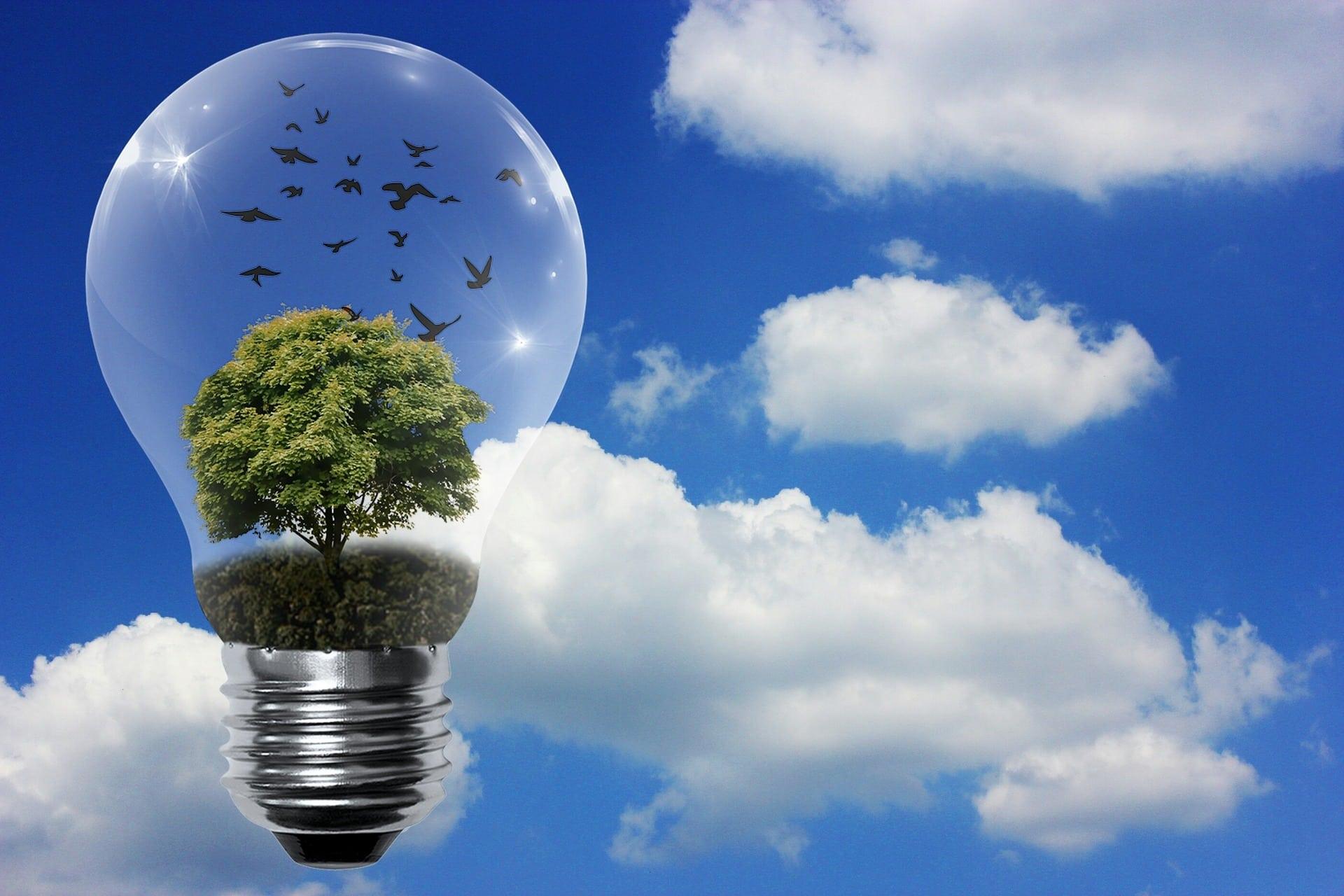 Les différents moyens de produire sa propre énergie :